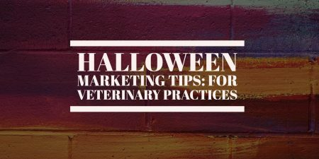 Halloween Marketing Tips: For Veterinary Practices