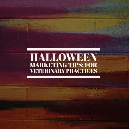 Halloween Marketing Tips: For Veterinary Practices